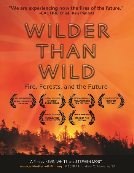 wilder-than-wild movie poster- words over flames