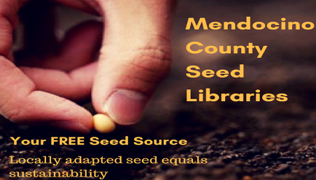 MCSL- Mendocino County Seed Libraries logo with a hand holding a seed