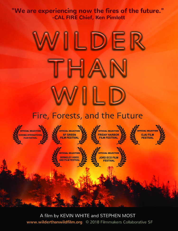 wilder-than-wild-poster with fire burning in forest